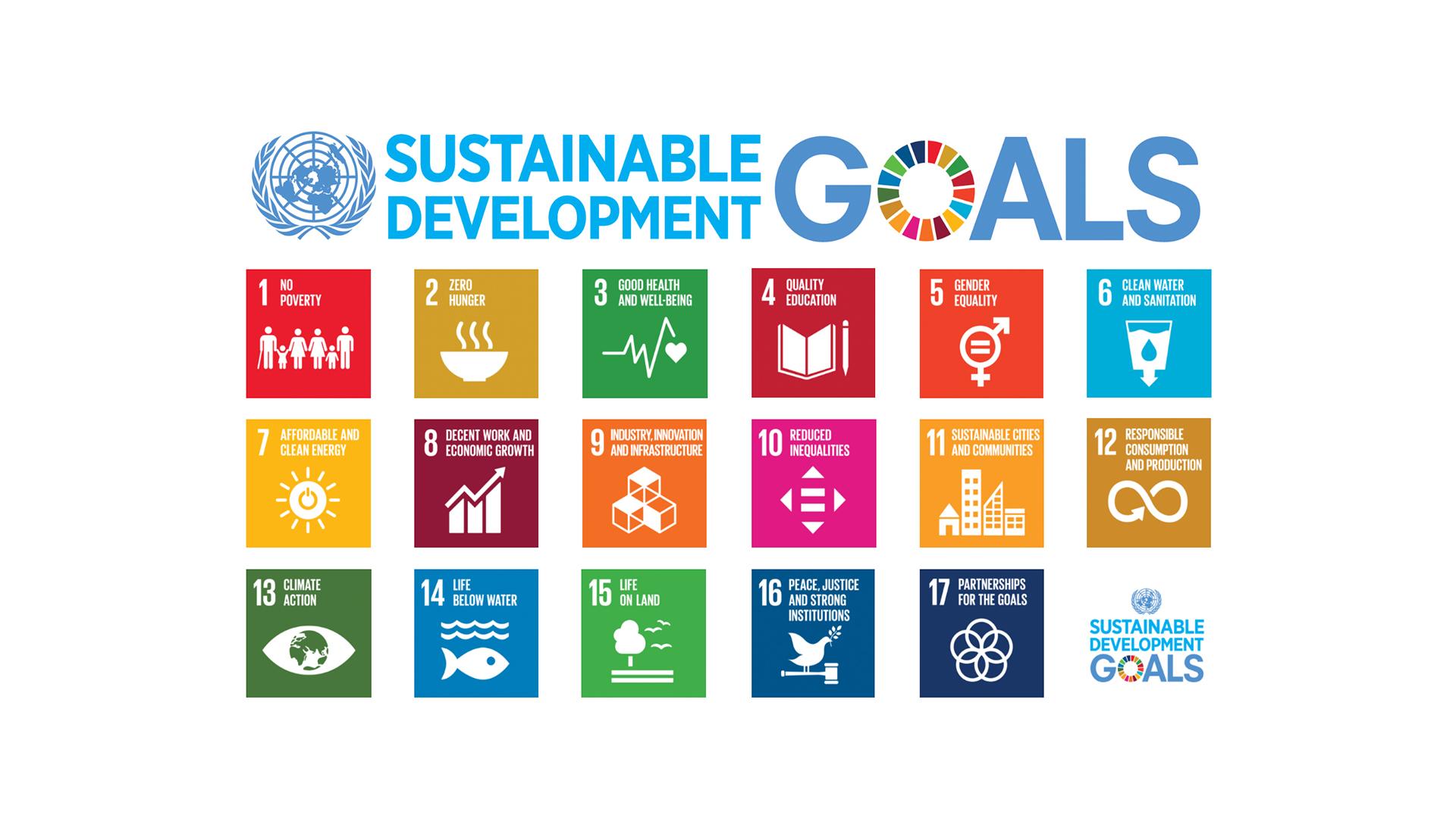 Doelstellingen Verenigde Naties